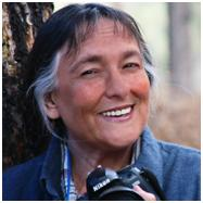 Expert Interview: Aggie Villanueva Author of 'Amazon Categories Create Best Sellers'